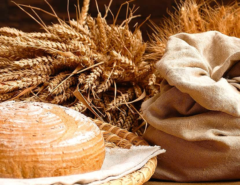 The process of making bread in the early 20th century. Video.