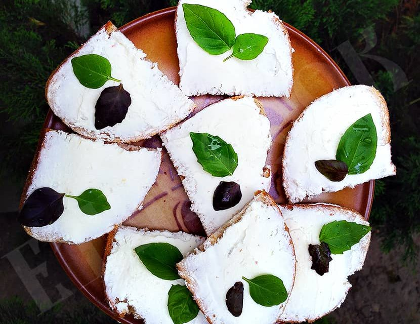 Cottage cheese sandwiches with fresh basil leaves